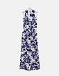 Mono floral bicolor Quiz